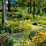 【北海道ガーデン街道】8つの庭園で大自然を満喫しよう!