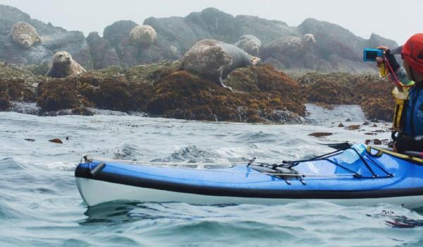 Cliff Kayaks
