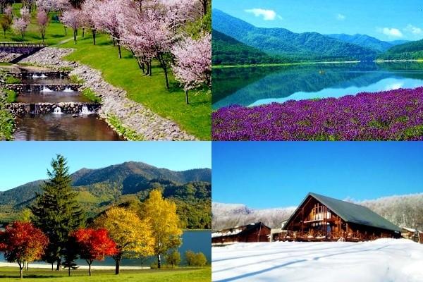 かなやま湖イメージ