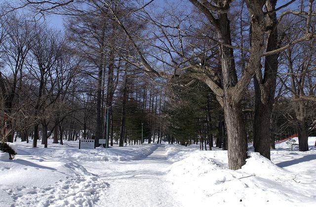 札幌公園イメージ