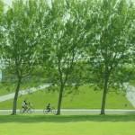こどもも満足♪北海道気分が味わえる札幌周辺の公園7選