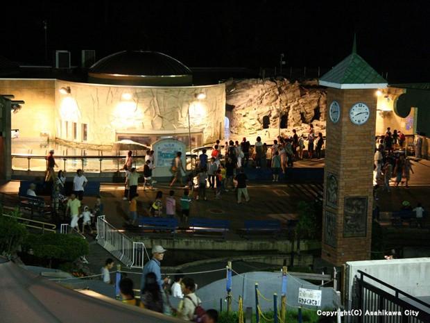 旭山動物園の「夜の動物園」