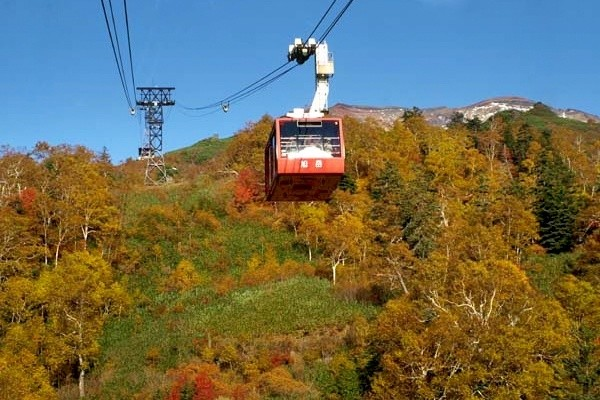 Autumn Leaves of Mount Asahi