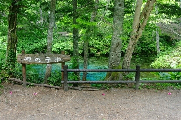 神の子池イメージ