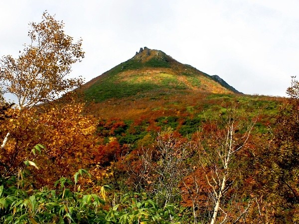 Autumn Leaves of Niseko
