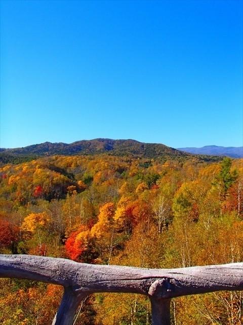 札幌・滝野すずらん丘陵公園の紅葉