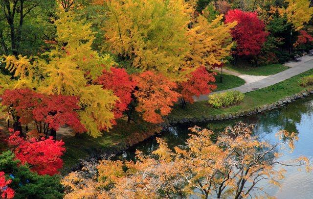 札幌・中島公園の紅葉