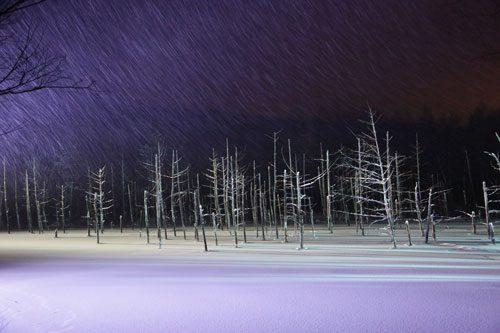 冬の美瑛イメージ