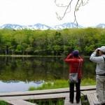 知床五湖ガイドツアーに参加しました!【世界自然遺産・知床】