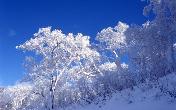 冬の登別イメージ
