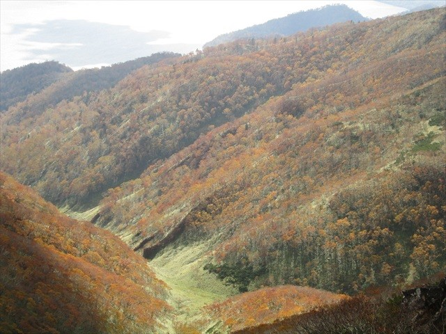 藻琴山イメージ