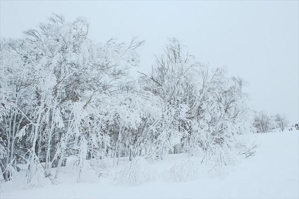 札幌のスキー場