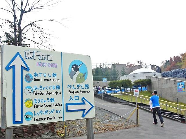 坂道が多い旭山動物園