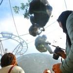 旭山動物園へバスでGO!一目でわかる札幌発ツアー比較表つき