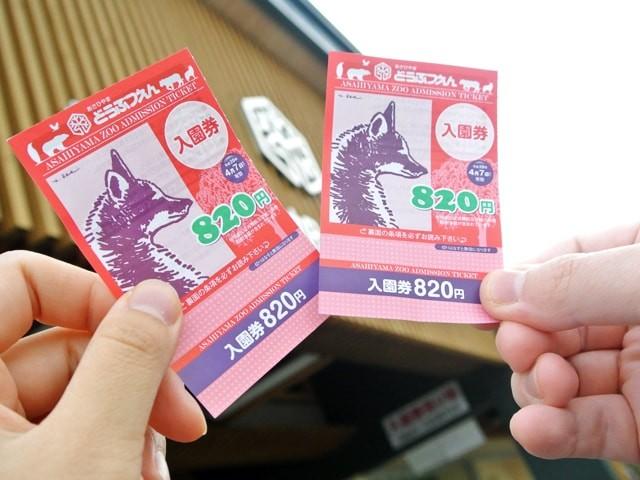 旭山動物園の入園券