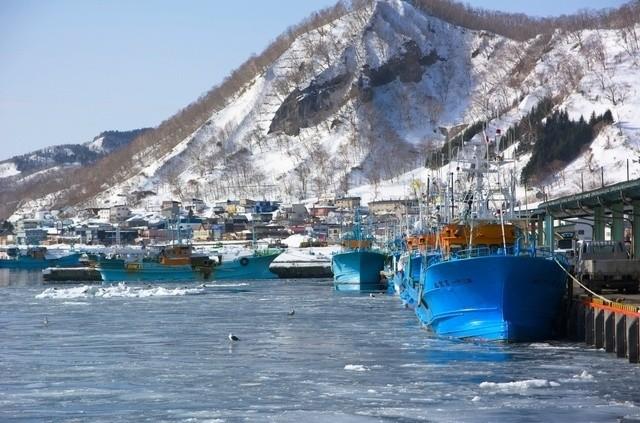 冬の羅臼漁港