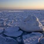 北海道の流氷を満喫したい方へ!流氷情報・楽しみ方まとめ!
