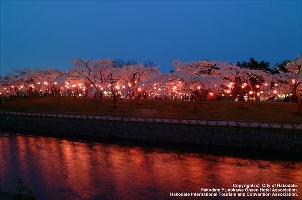 北海道観光・春
