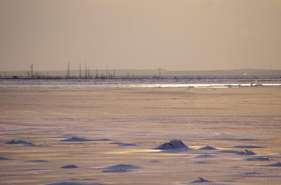 冬の野付半島・トドワラ