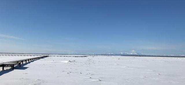 冬の野付半島、トドワラ