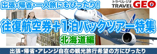 往復航空券 北海道GEO