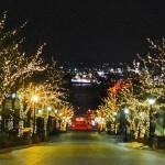 八幡坂をハイカラさんぽ♪函館の坂の名所を歩いてきました!