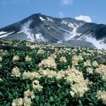 【見どころ・四季・ホテル】旭岳温泉の魅力、ご紹介します!