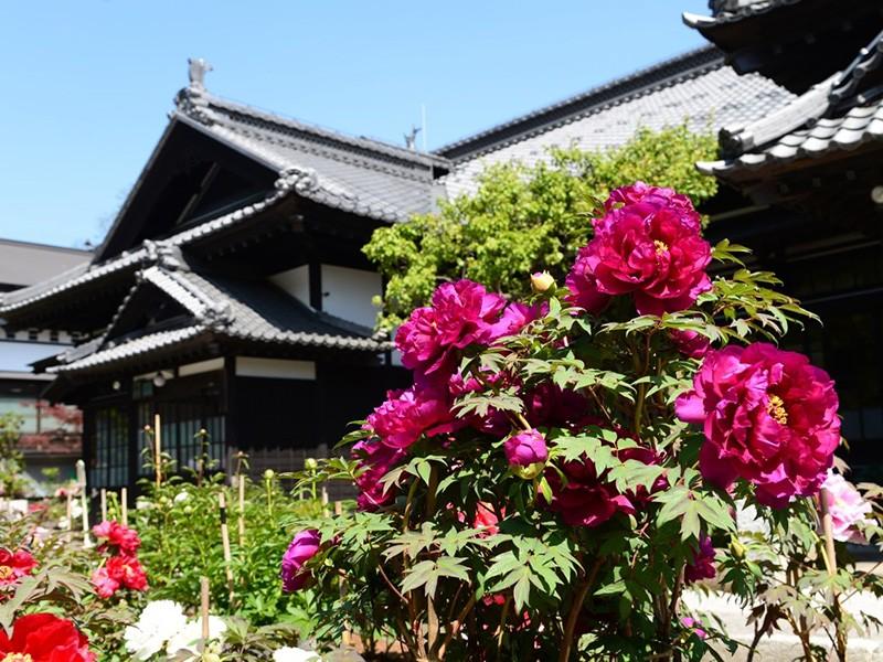 小樽 歴史的建造物