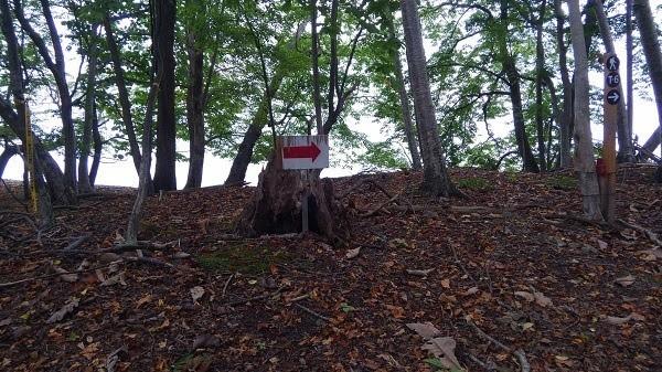 洞爺湖 中島トレッキング体験