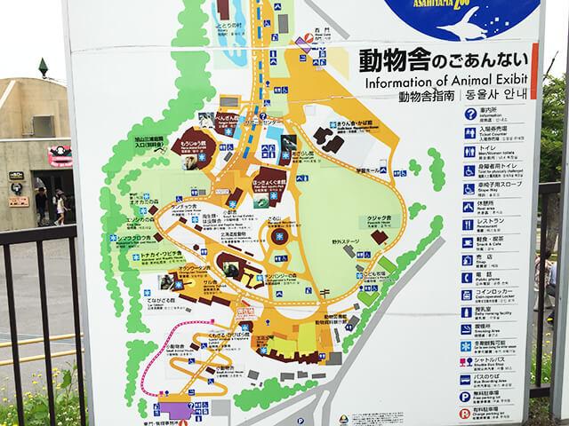 旭山動物園 地図