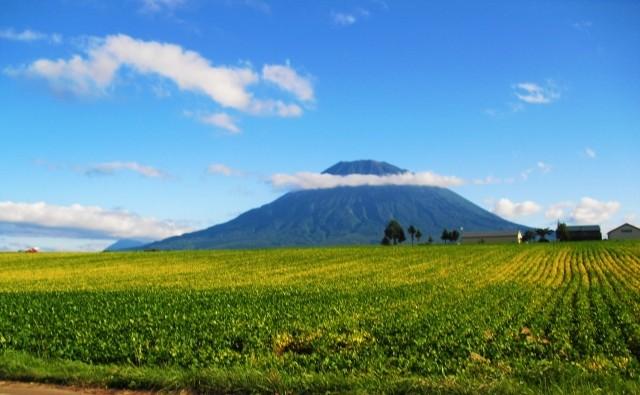 ニセコ|羊蹄山