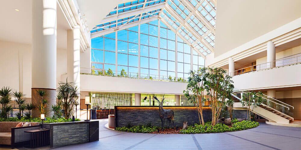 北海道 旅行 ホテル