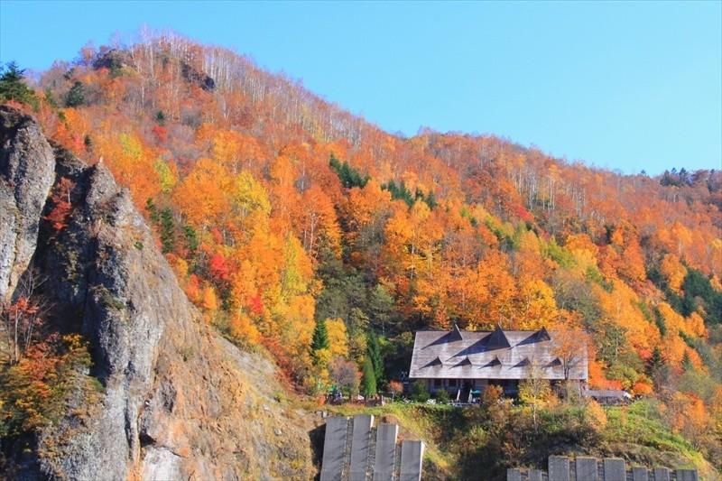 秋の北海道旅行イメージ