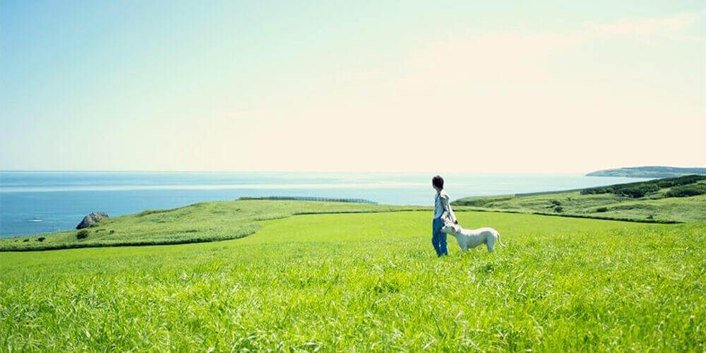 Beautiful Hokkaido