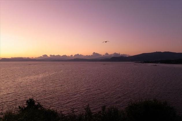 伊達市の海 イメージ