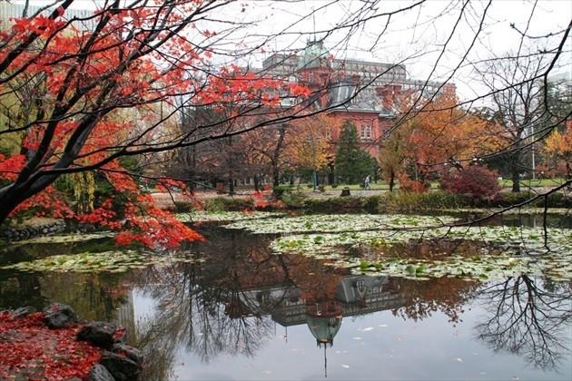 北海道庁旧本庁舎 秋