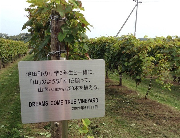 池田ワイン城 ドリカムブドウ園