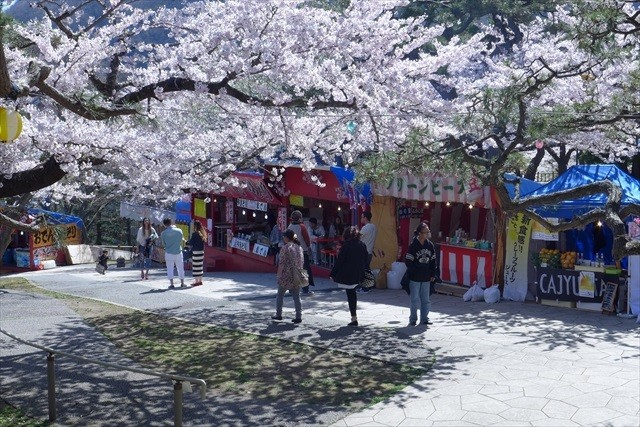 函館公園露店