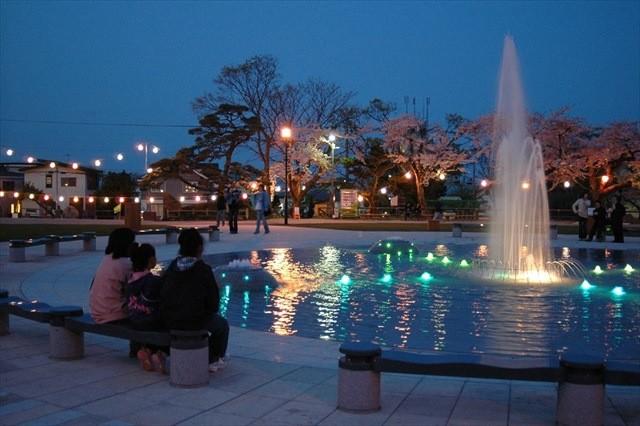 函館公園夜桜