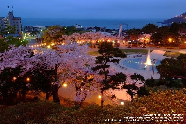 夜の函館公園