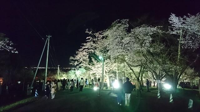 夜桜まつり2