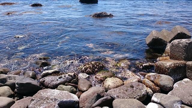 入舟町前浜海水浴場水辺