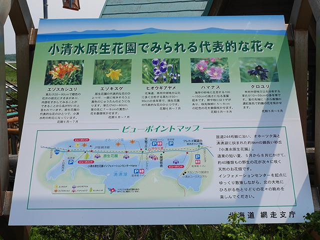 小清水原生花園 看板