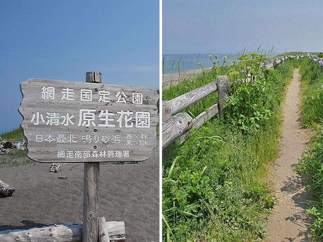 小清水原生花園 遊歩道