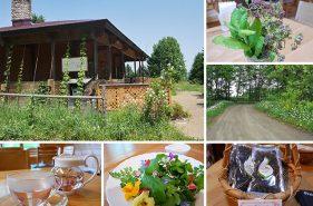北見で育つ無農薬ハーブ|農業法人「香遊生活」のカフェ&ショップはこんなところ