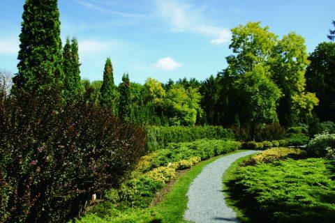 真鍋庭園2