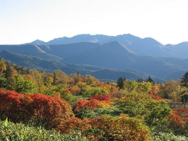 トムラウシ山の紅葉