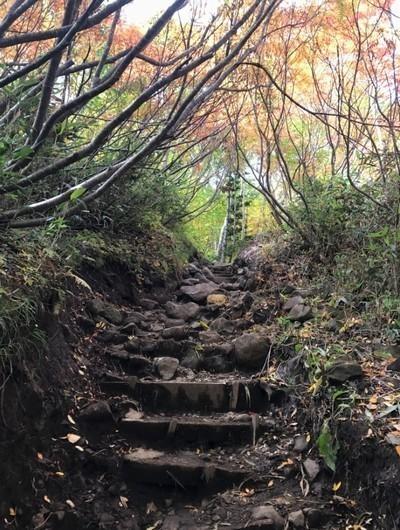 銀泉台登山道