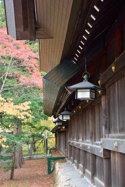 秋の円山イメージ