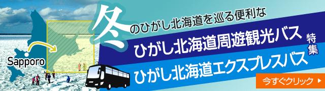 ひがし北海道バスバナー